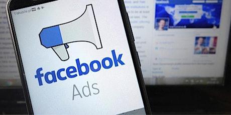 Curso de Verão: Facebook Ads e Instagram Ads entradas