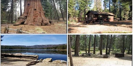 Great  Escape Camping & Hiking Adventure at Sequoia/Kings Canyon Parks! tickets