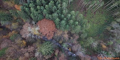 Partnerstvo za trajnostno rabo zemljišč in gozdarstvo tickets