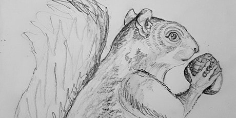 Get Drawing: Squirrels Workshop tickets