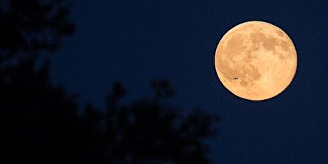 Full Moon Night Hike - Before Dark tickets