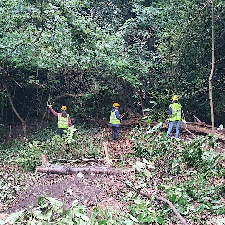 Highbury Garden's Volunteering image
