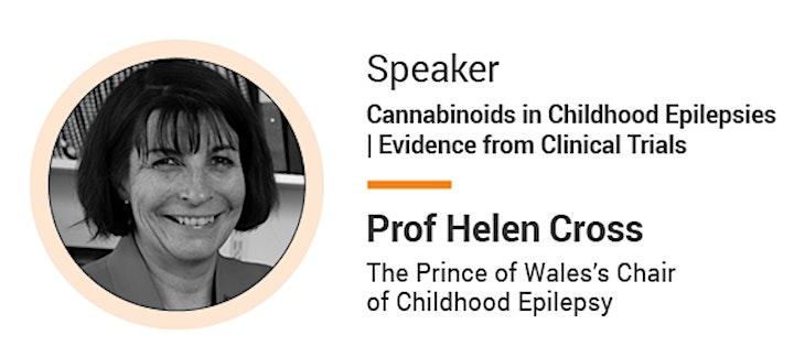 UK Medicinal Cannabis Summit 2021: Evidence, Policy & Regulation image