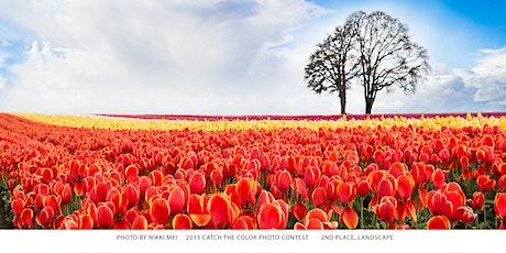Tulip Field Photography with Sigma Lenses tickets