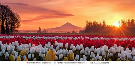 Sunrise  Photography at the Tulip Field with Sigma Lenses tickets