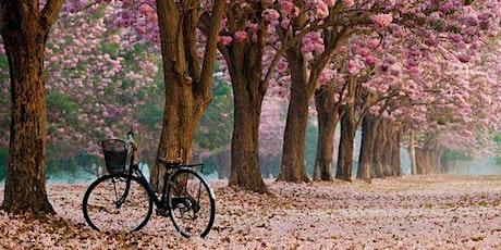 WE Bike NYC's Roosevelt Island Cherry Blossom Ride tickets