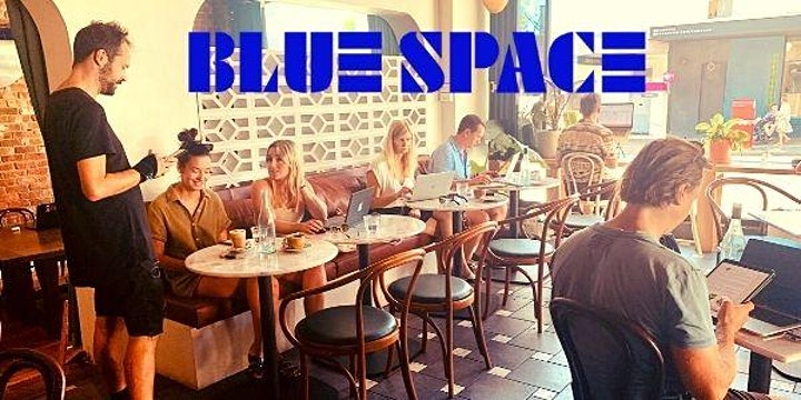 BLUE SPACE THINK TANK image