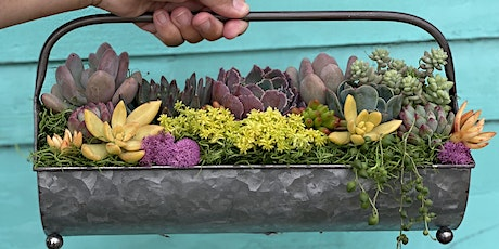 Sip 'n' Succs Spring Galvanized Planter Workshop tickets