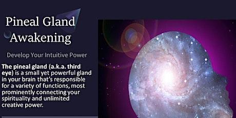 Pineal Gland Awakening Online 6-week course tickets
