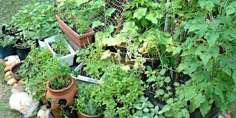 Container Gardening tickets