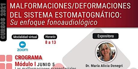 Malformaciones/deformacionesdel sistema estomatognático: Enfoque fono.. biglietti