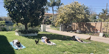 Chicken Therapy Yoga Group tickets
