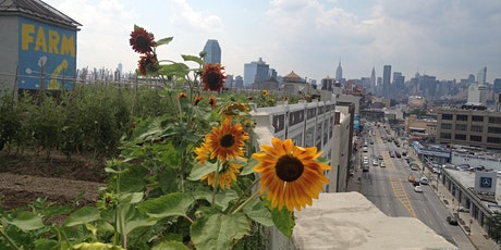 City Growers Farm Workshop - Long Island City tickets