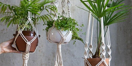Macramé Plant Hanger Virtual Workshop tickets