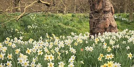 Timed entry to Anglesey Abbey, Gardens and Lode Mill (5 Apr- 11 Apr) tickets