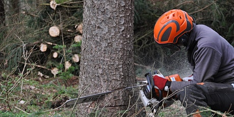 First Aid at Work - 3 Day Course  including Forestry First Aid +F (RQF) tickets