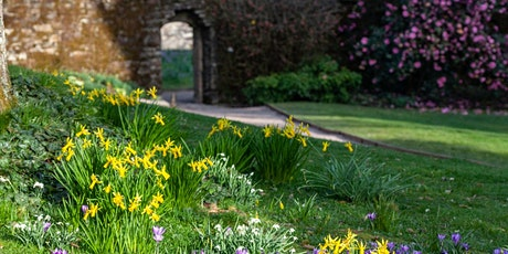 Timed entry to Cotehele (5 Apr - 11 Apr) tickets
