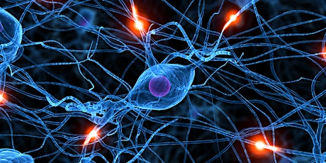 Does Neuroscience Disprove the Soul? tickets