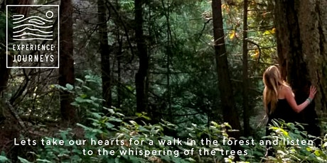 Full Moon Forest & Nature Therapy Walk tickets