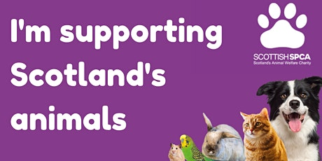Virtual Sponsored Pet Walk tickets