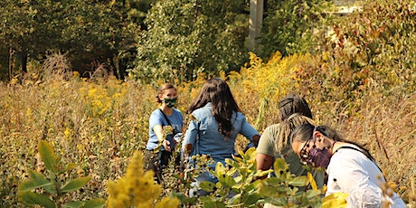 Seasonal Nature Walks with the Nature Museum tickets