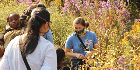 City Nature Challenge: Guided Prairie Walk with the Nature Museum tickets