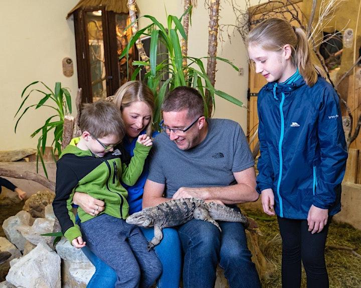 Merrist Wood Animal Encounters Tour image