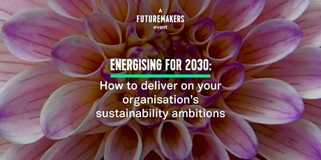 How to deliver on your organisation's 2030 sustainability ambitions tickets
