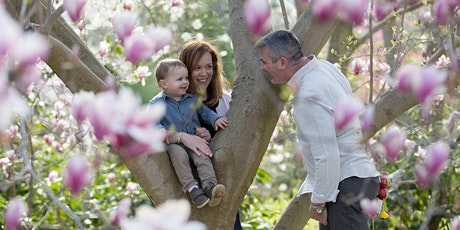 Spring Mini Sessions in the Park tickets
