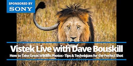 Vistek Live: A Conversation with Wildlife Photographer Dave Bouskill tickets