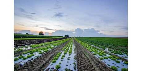 Private and Ag Row Crops Pesticide Exam Prep Class - In-person event tickets