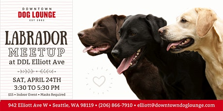 Labrador Meetup at DDL Elliott tickets