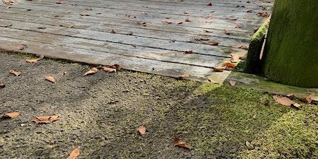 Bridge 3 Cleaning - Meet Near Riverside Park tickets
