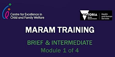 MARAM Brief and Intermediate Level Training WAITLIST tickets
