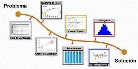 7 Herramientas Básicas de Calidad con MS Excel entradas