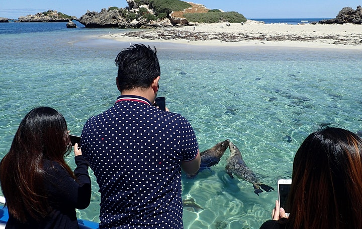 Penguin Island & Naragebup Tour presented by CAHRS image