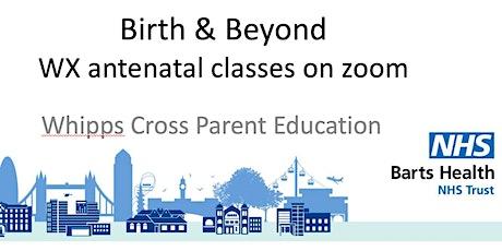 Online weekend Birth & Beyond antenatal course (31 July & 7 August 10-4.30) tickets