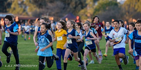 Berwick Cross Country running festival tickets