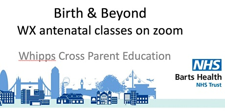 Online Tuesday afternoon antenatal class (starts 18 May 2-4.30pm) tickets