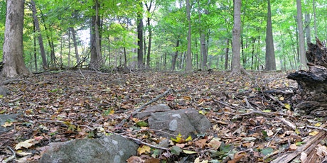 Webinar: Managing Deer to Restore Forests and Sequester Carbon tickets