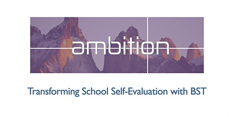 Transforming School Self-evaluation with BST tickets