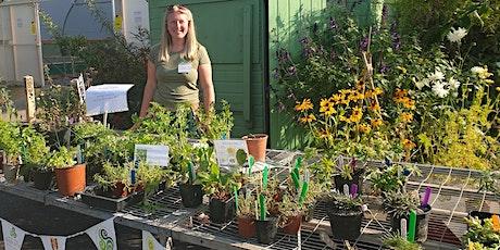 Treborth Botanic Garden Plant Sale tickets