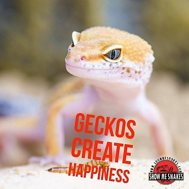 Show Me Reptile & Exotics Show (Charlotte) image