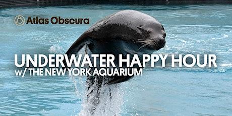 Underwater Happy Hour w/ the NY Aquarium: SEA LIONS AND FRIENDS! tickets
