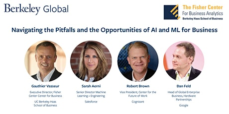 Navigating the Pitfalls and the Opportunities of AI and ML for Business tickets