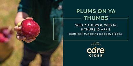 Plums On Ya Thumbs - Fruit Picking Event tickets