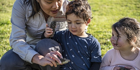 Mini Park Rangers Term 2, 2021 - Sydney Olympic Park tickets