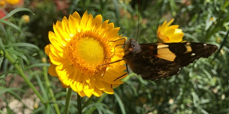 Sharing your garden with wildlife - An Introduction tickets