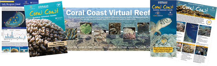 Corals at Your Doorstep image