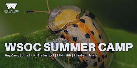 Bugs (Grades 1-4) tickets